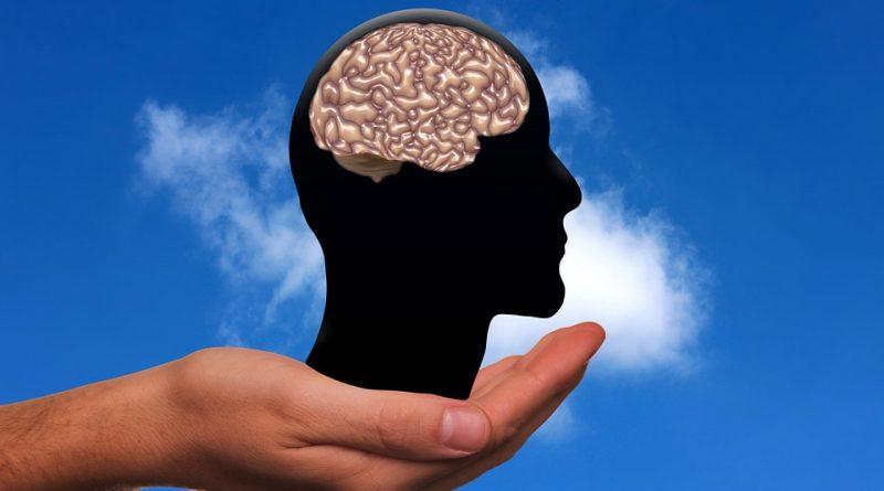 Mozart zvyšuje inteligenci u dětí a další mýty, které se s mozkem pojí