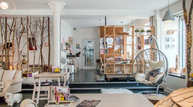 Přírodní světlo dostaneme do interiéru i s pomocí nábytku a doplňků